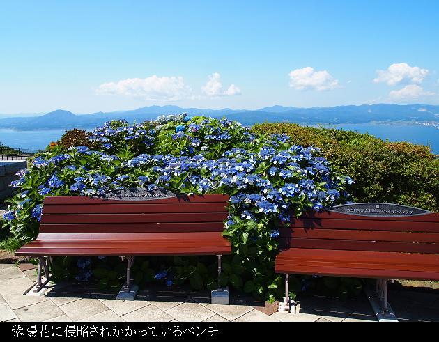 函館昼09.jpg