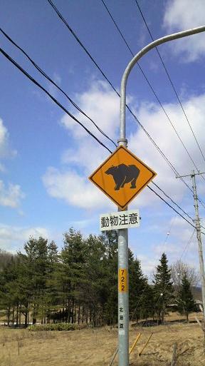 動物注意(熊)B.jpg
